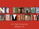 NC State University Red