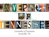 University of Tennessee alphabet white websize